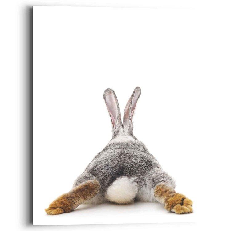 Konijn Rabbit - Haas - Staart - Relax  - Schilderij Deco Panel MDF 40 x 50 cm