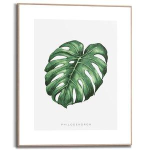 Schilderij Philodendron