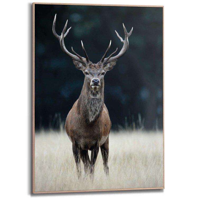 Hert Dieren - Bos - Gewei - Natuur - Schilderij Slim Frame MDF 50 x 70 cm