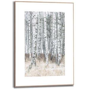 Schilderij Berkenbomen