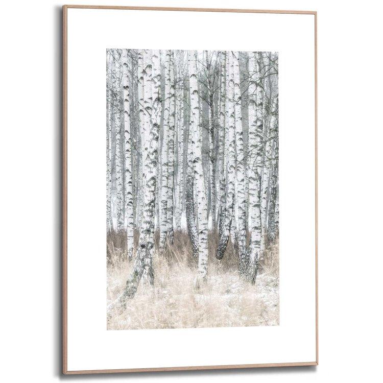 Berkenbomen Natuur - Fotografie - Kunst - Schilderij Slim Frame MDF 50 x 70 cm