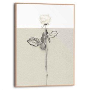 Schilderij Witte roos