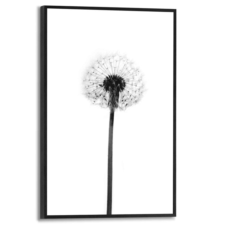 Paardenbloem Plant - Natuur - Dandelion - Modern - Schilderij Slim Frame MDF 20 x 30 cm