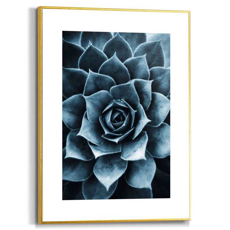 Vetplant Plant  - Natuur - Modern - Schilderij Slim Frame MDF 30 x 40 cm