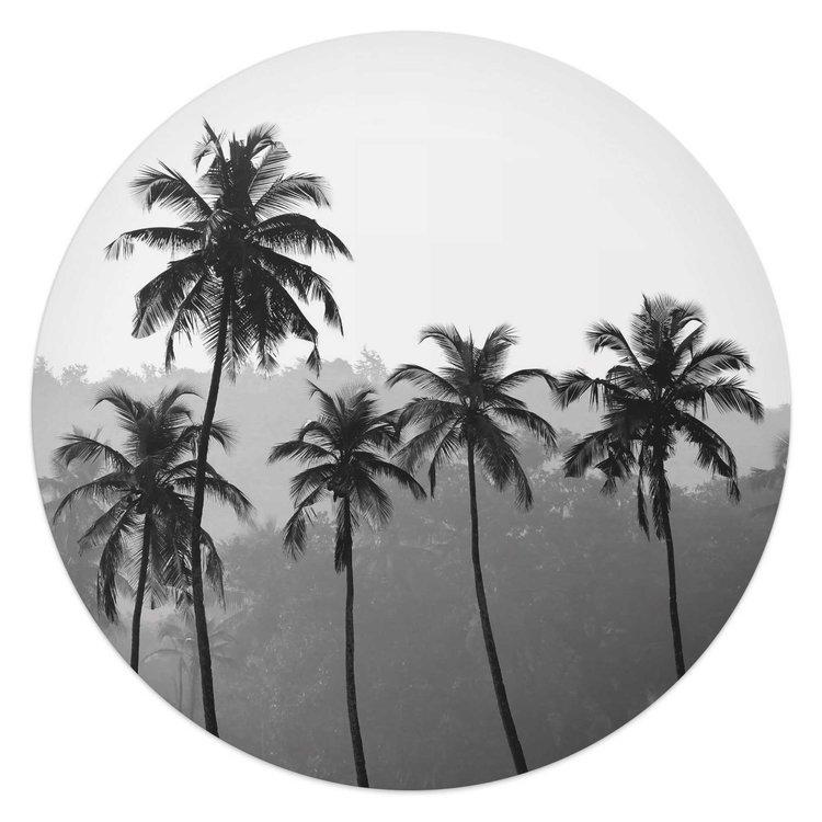 Palmbomen Natuur - Tropisch - Bos - Glasschilderij rond Glas