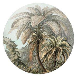 Glasschilderij rond Palmboom