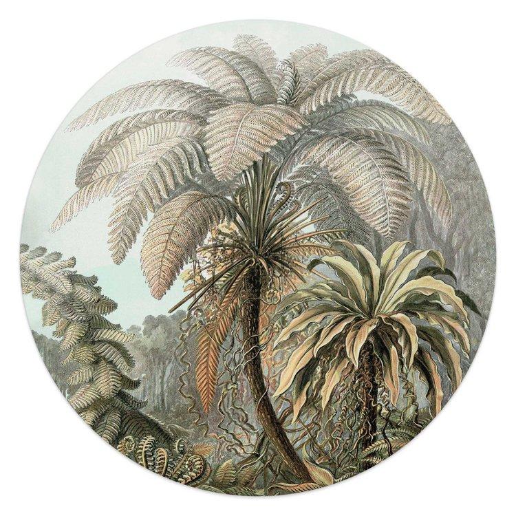 Palmboom Natuur - Tropisch - Bos  - Glasschilderij rond Glas
