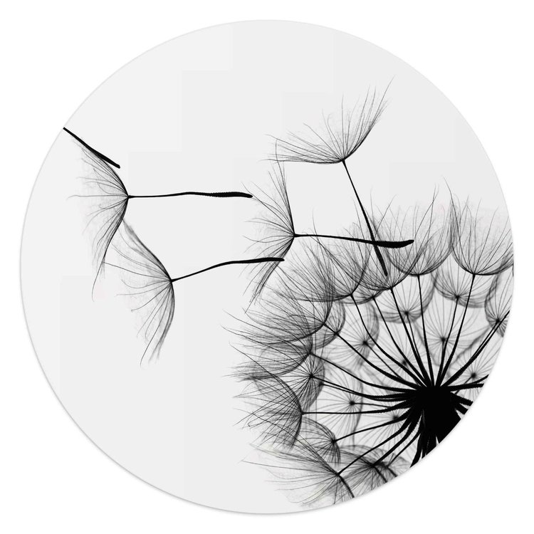 Paardenbloem Illustratie - Close-up - Natuur -  - Glasschilderij rond Glas