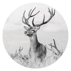 Glasschilderij rond Trots hert