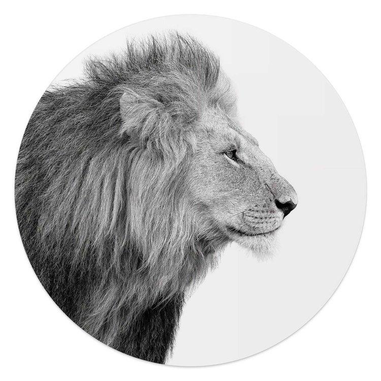 Leeuw  Koning - Jungle - Portret - Krachtig  - Glasschilderij rond Glas