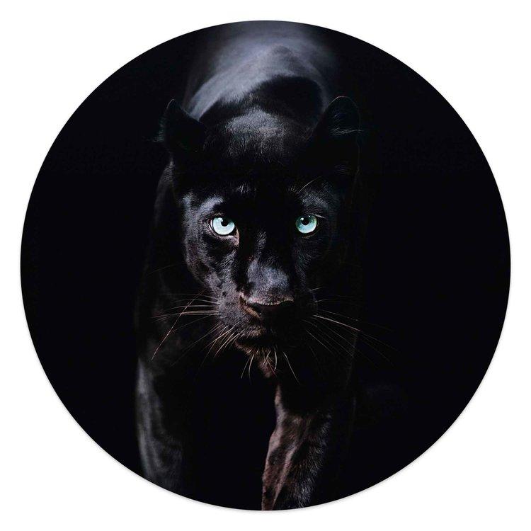 Zwarte Panter Donker - Dierenportret - Krachtig   - Glasschilderij rond Glas