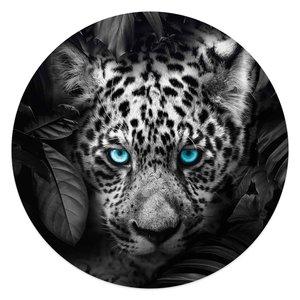 Glasschilderij rond Luipaard