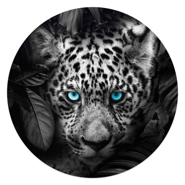 Luipaard Blauwe ogen - Planten - Natuur - Glasschilderij rond Glas