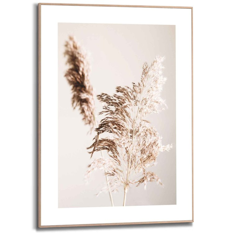 Pampas Planten - Natuur  - Schilderij Slim Frame 50 x 70 cm MDF