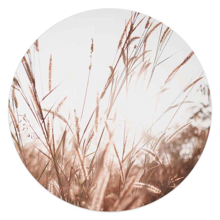 Zomer Planten - Natuur - Zon  - Schilderij Round Art 50 x 50 cm MDF