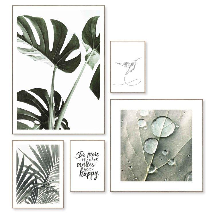 Natuurlijnen Dauwdruppel - Kolibrie - Monstera - Plant - Set van 5 schilderijen  Hout