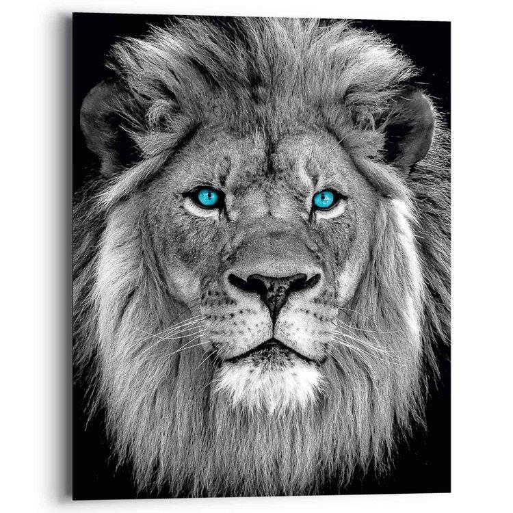 Leeuw met blauwe ogen  Roofdier - Natuur - Portret - Fotografie - Schilderij Deco Panel 40 x 50 cm MDF
