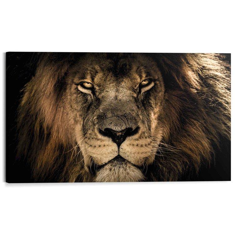Leeuw Donker - Blik - Koning - Jungle  - Schilderij Deco Block 118 x 70 cm MDF
