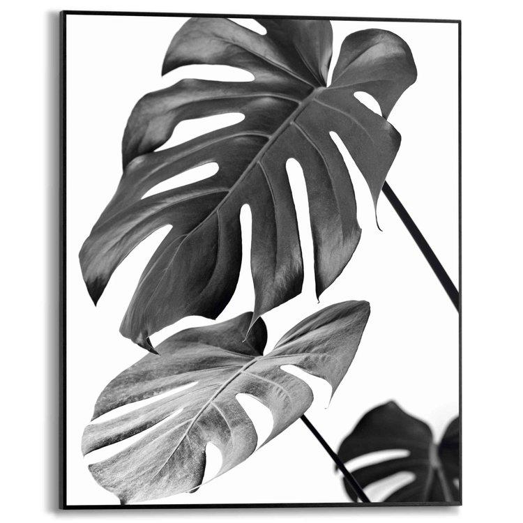 Monsteraplant Blad - Botanisch - Natuur - Schilderij Slim Frame 40 x 50 cm MDF