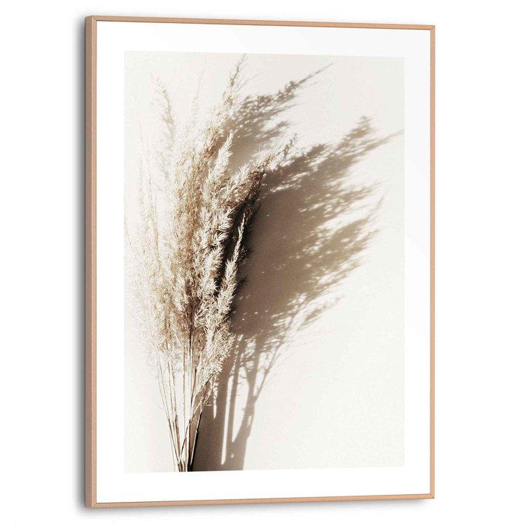 Zonnig gras  Boeket - Pampas - Schaduw - Zomer  - Schilderij Slim Frame 30 x 40 cm MDF