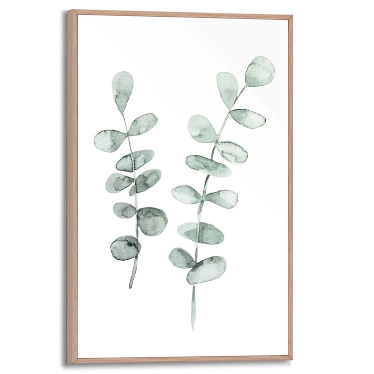 Eucalyptus Botanisch - Plant - Natuur - Bladeren - Schilderij Slim Frame 20 x 30 cm MDF