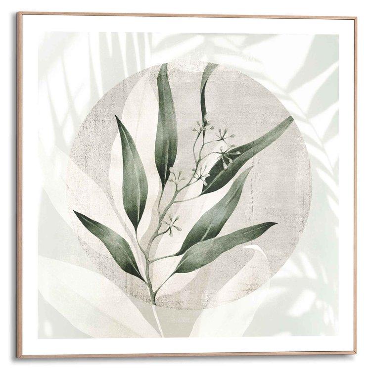 Bladeren Botanisch - Natuur - Abstract - Schaduw - Zon  - Schilderij Slim Frame 50 x 50 cm MDF