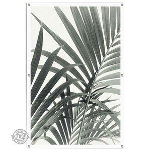 Tuinposter Palmbladeren