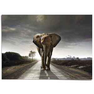XXL Poster Wandelende olifant