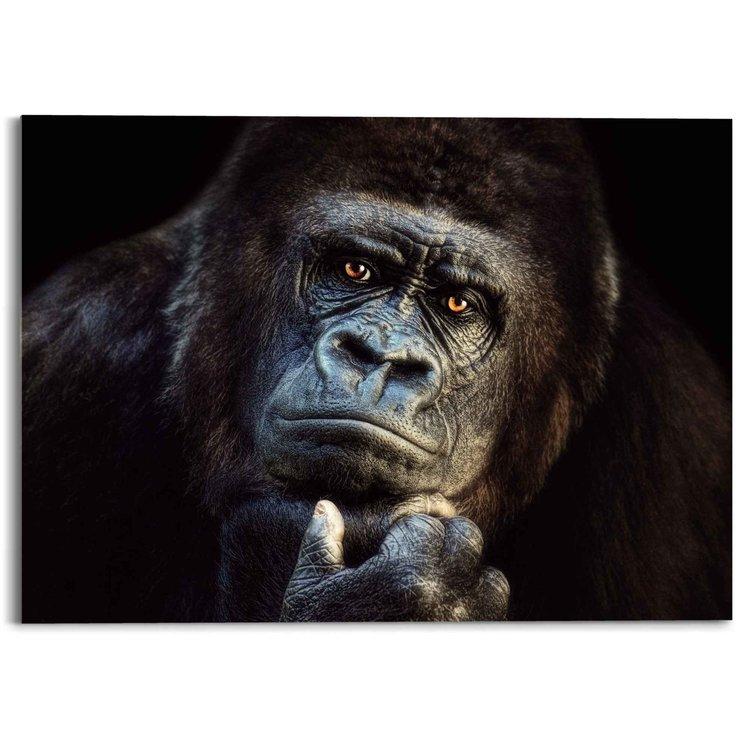 Gorilla Aap - Krachtig - Bedachtzaam - Wilde dieren - Acrylglas 70 x 50 cm Plexiglas