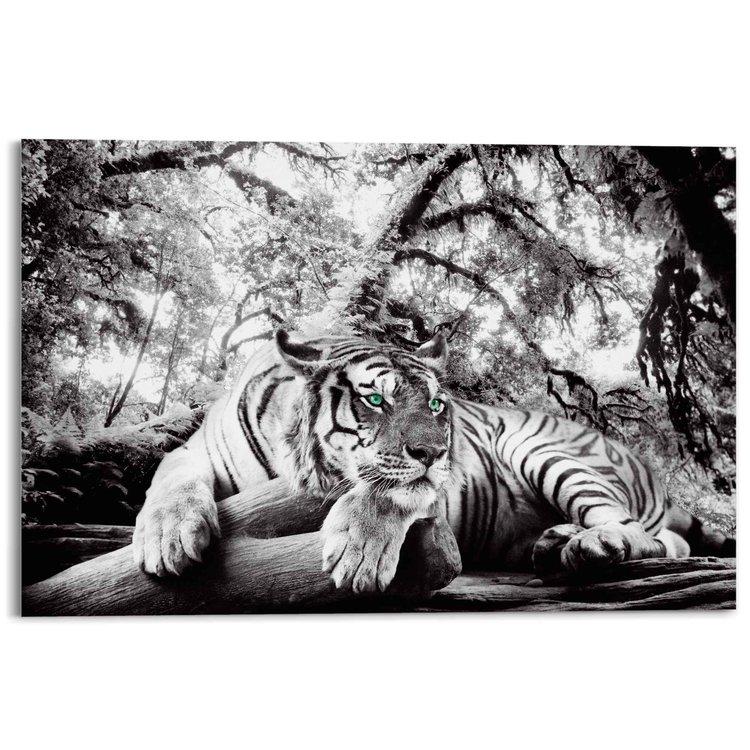 Tijger Roofdier - Jungle - Bos - Acrylglas 120 x 80 cm Plexiglas