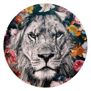 Acrylglas Leeuw