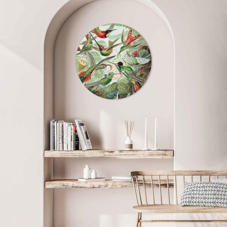 Hummingbirds Kolibrie - Vogels - Natuur - Botanisch - Acrylglas Plexiglas