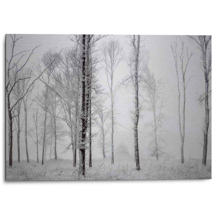 Winters bos Stil - Natuur - Zwart-Wit - Bos - Bomen  - Alu-Dibond Aluminium