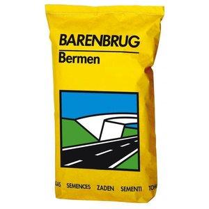 Barenbrug Roadside (Bermes et remblais )- 15kg