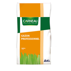Carneau Gazon Terrain Sec Nº34 10KG