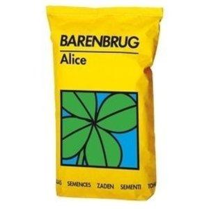 Barenbrug Alice Trèfle Blanc - 10 kg
