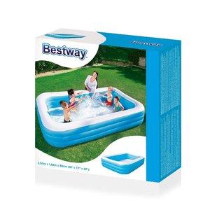 Bestway Zwembad Family Deluxe 305