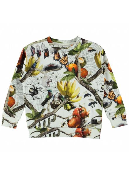 Molo Madsim sweater living nature