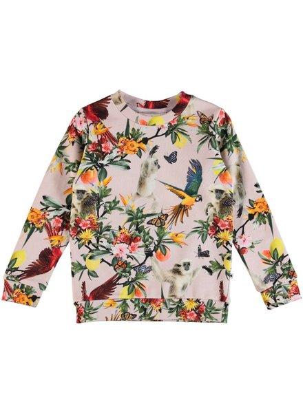 Molo Mara sweater  birds and monkeys