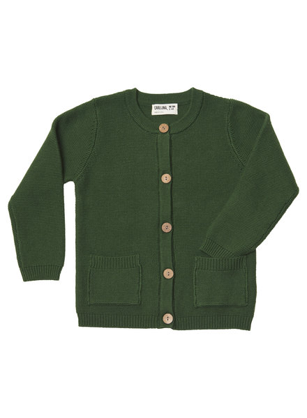 CarlijnQ Knit basics - cardigan with pockets (green)