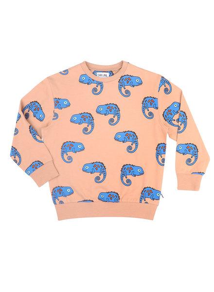 CarlijnQ Chameleon boy - sweater
