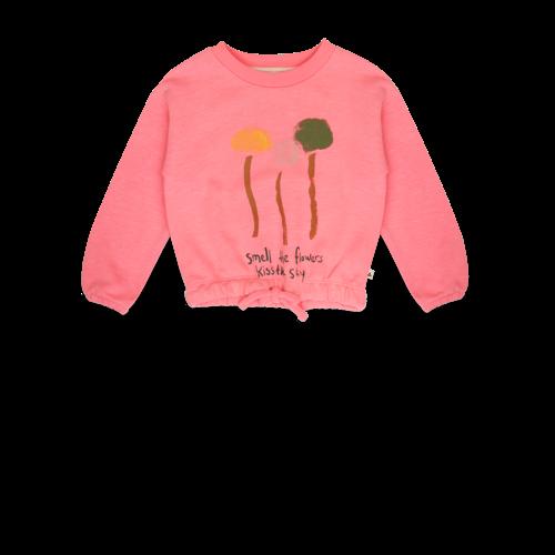 ammehoela Philou sweater