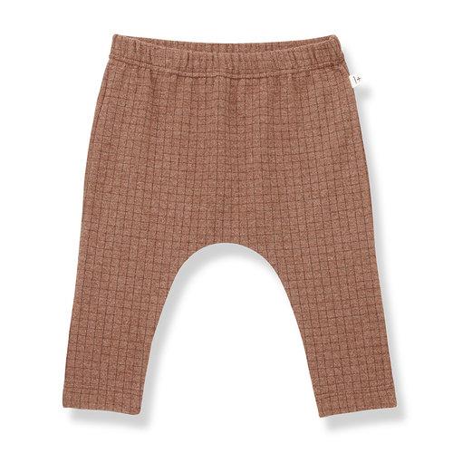 1+ in the family MALPASO leggings toffee