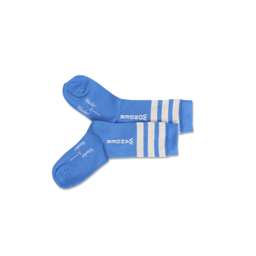Wander & Wonder Stripe socks blue