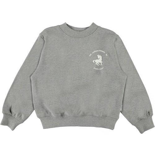 Molo Marge  grey melange sweater
