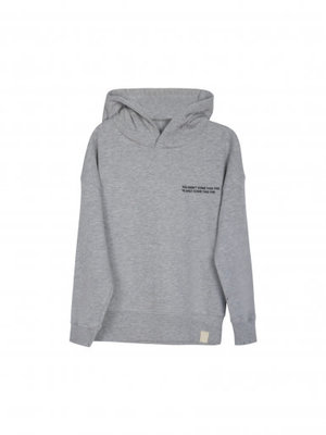 Idigdenim Mike hoodie grey melange