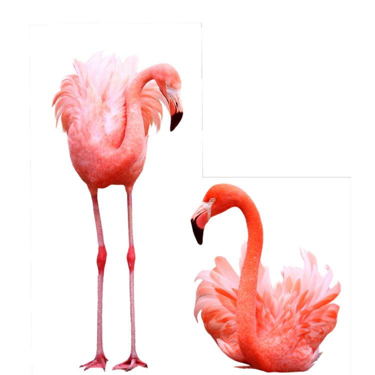 Muursticker 2 flamingo's