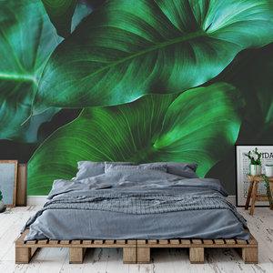 Behang Tropical leaves - 3