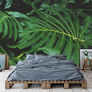 Behang Tropical leaves - 5