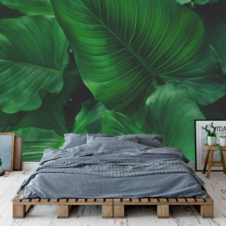 Behang Tropical leaves - 6